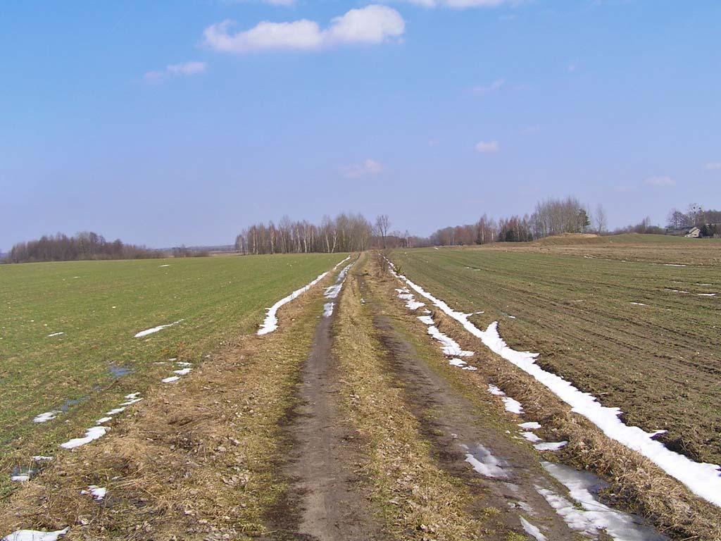 1_2011-03-14.JPG