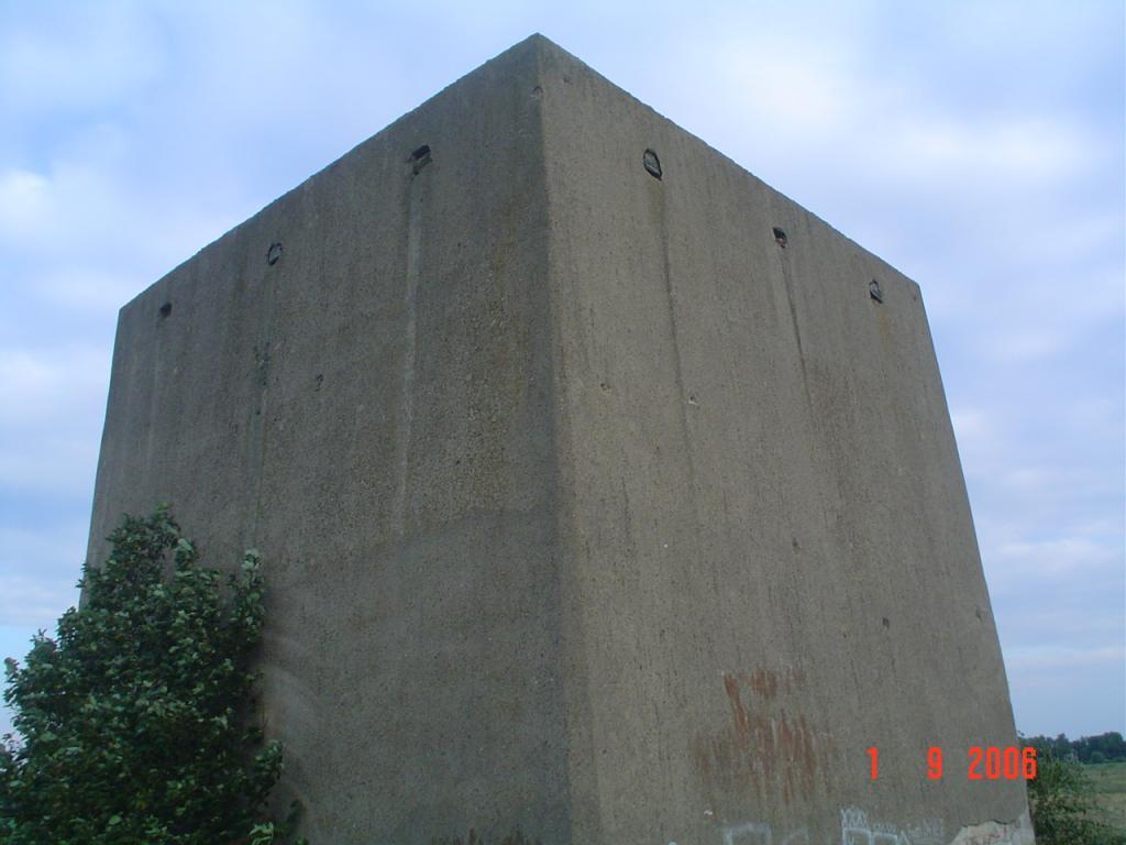 5-20100705.JPG