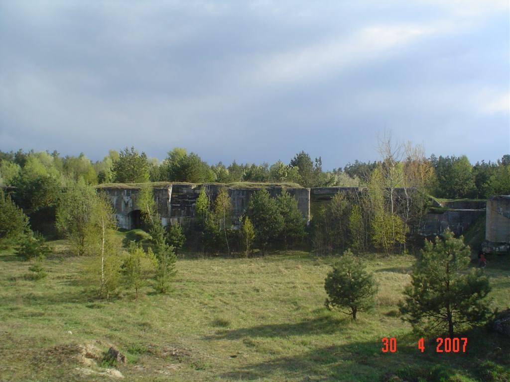 7-20100628.JPG