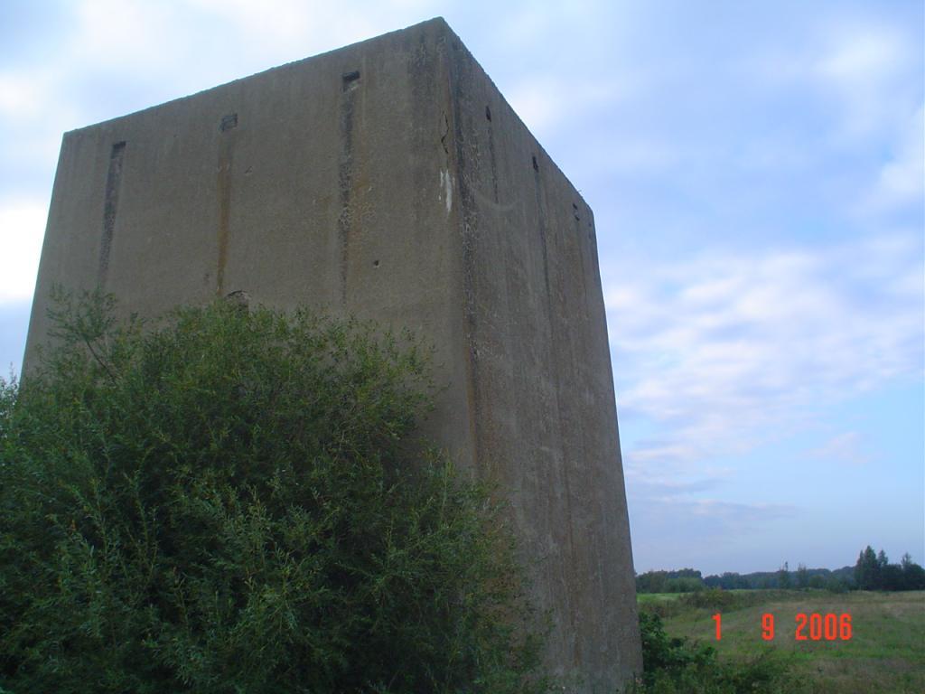 7-20100705.JPG